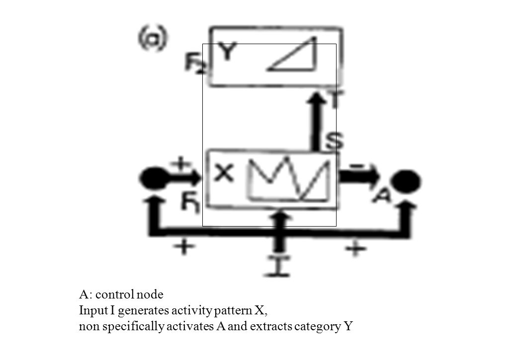 A: control node Input I generates activity pattern X, non specifically activates A and extracts category Y
