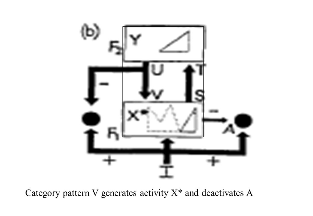 Category pattern V generates activity X* and deactivates A