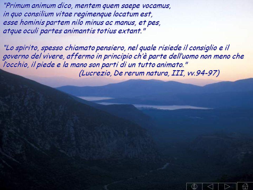 """""""Primum animum dico, mentem quem saepe vocamus, in quo consilium vitae regimenque locatum est, esse hominis partem nilo minus ac manus, et pes, atque"""