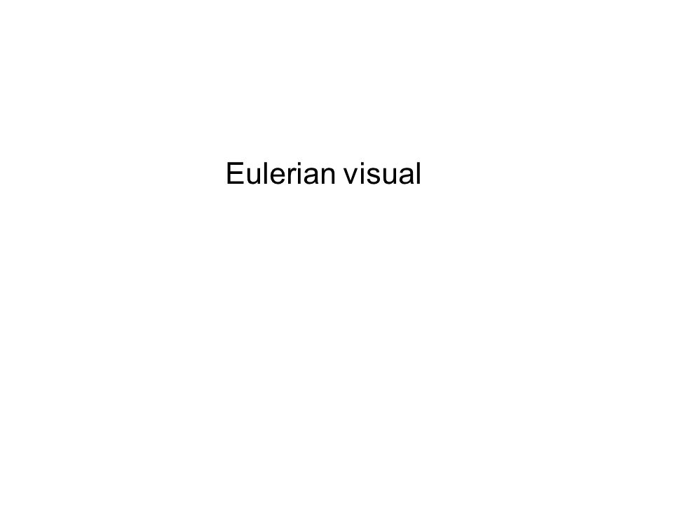 Eulerian visual