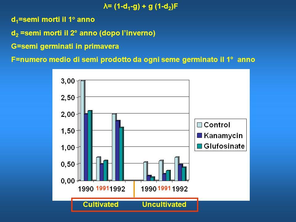 CultivatedUncultivated λ= (1-d 1 -g) + g (1-d 2 )F d 1 =semi morti il 1 ° anno d 2 =semi morti il 2° anno (dopo l'inverno) G=semi germinati in primavera F=numero medio di semi prodotto da ogni seme germinato il 1° anno 1991