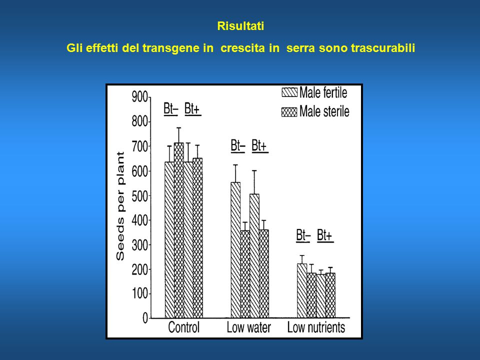 Risultati Gli effetti del transgene in crescita in serra sono trascurabili
