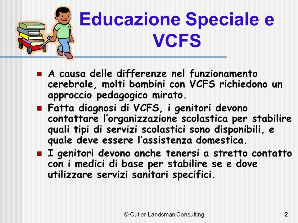 2 Educazione Speciale e VCFS A causa delle differenze nel funzionamento cerebrale, molti bambini con VCFS richiedono un approccio pedagogico mirato. F