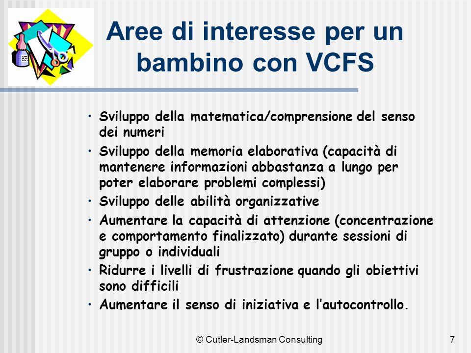7 Aree di interesse per un bambino con VCFS Sviluppo della matematica/comprensione del senso dei numeri Sviluppo della memoria elaborativa (capacità d