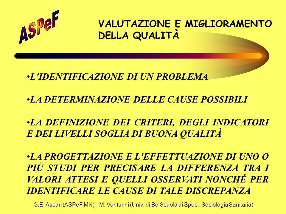 G.E. Ascari (ASPeF MN) - M. Venturini (Univ. di Bo Scuola di Spec. Sociologia Sanitaria) VALUTAZIONE E MIGLIORAMENTO DELLA QUALITÀ L'IDENTIFICAZIONE D
