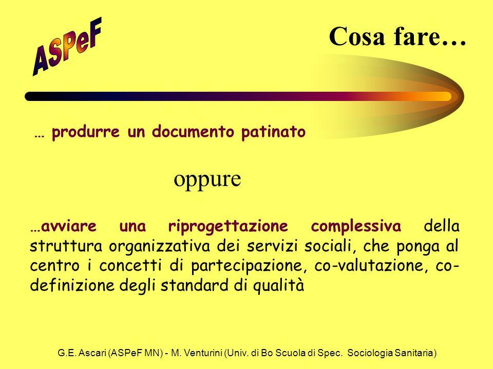 G.E. Ascari (ASPeF MN) - M. Venturini (Univ. di Bo Scuola di Spec. Sociologia Sanitaria) Cosa fare… … produrre un documento patinato …avviare una ripr