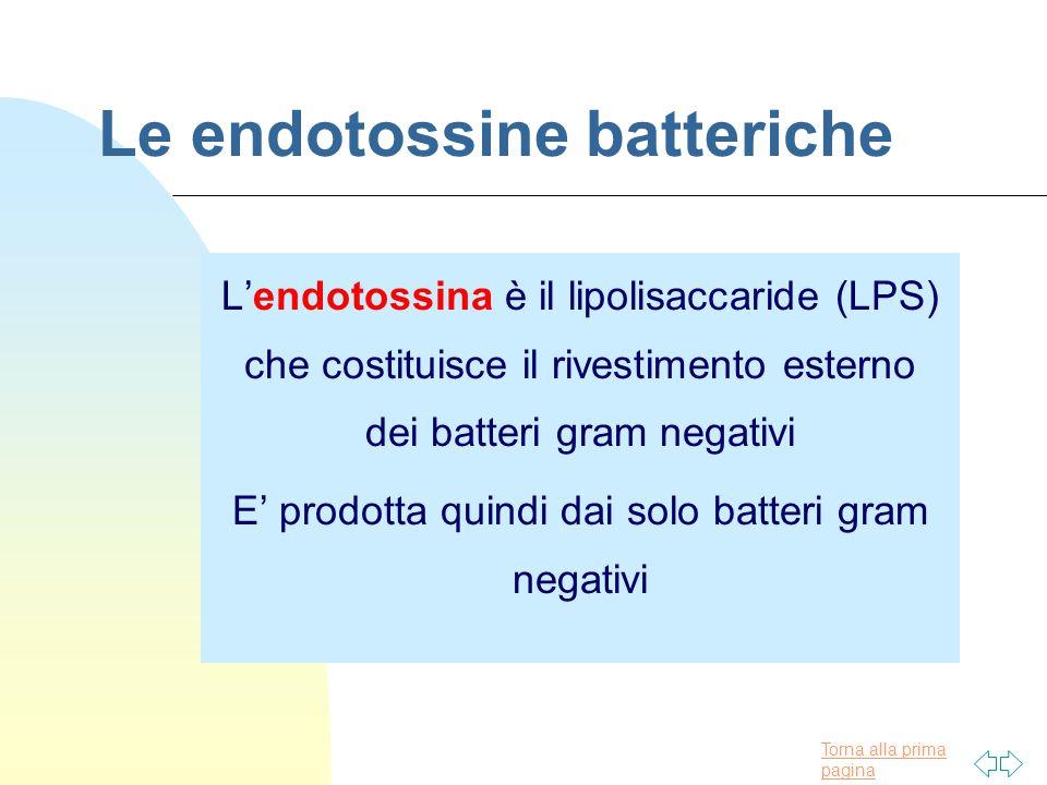 Torna alla prima pagina Le endotossine batteriche L'endotossina è il lipolisaccaride (LPS) che costituisce il rivestimento esterno dei batteri gram negativi E' prodotta quindi dai solo batteri gram negativi