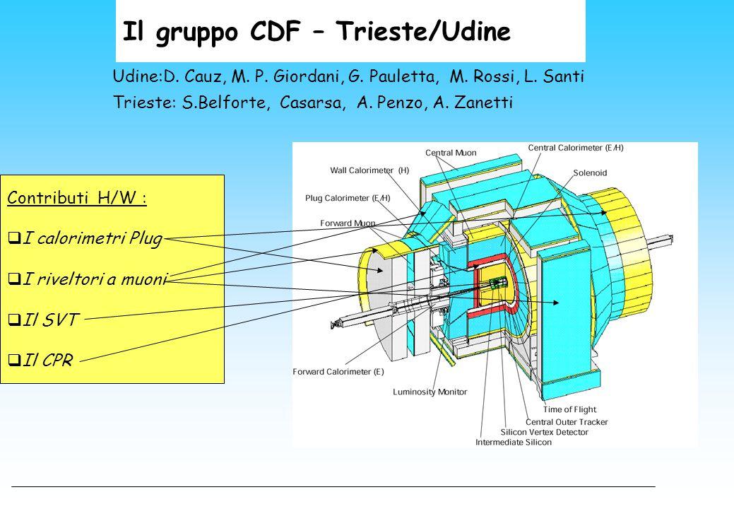 Il gruppo CDF – Trieste/Udine Udine:D. Cauz, M. P. Giordani, G. Pauletta, M. Rossi, L. Santi Trieste: S.Belforte, Casarsa, A. Penzo, A. Zanetti Contri