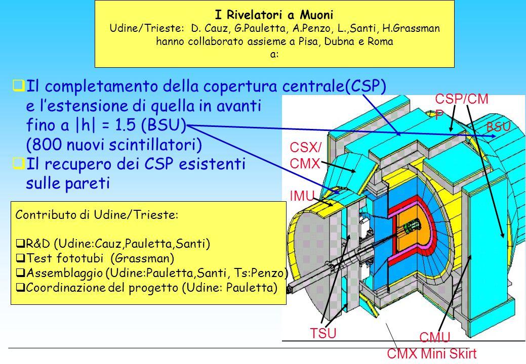 I Rivelatori a Muoni Udine/Trieste: D. Cauz, G.Pauletta, A.Penzo, L.,Santi, H.Grassman hanno collaborato assieme a Pisa, Dubna e Roma a: CSP/CM P CSX/
