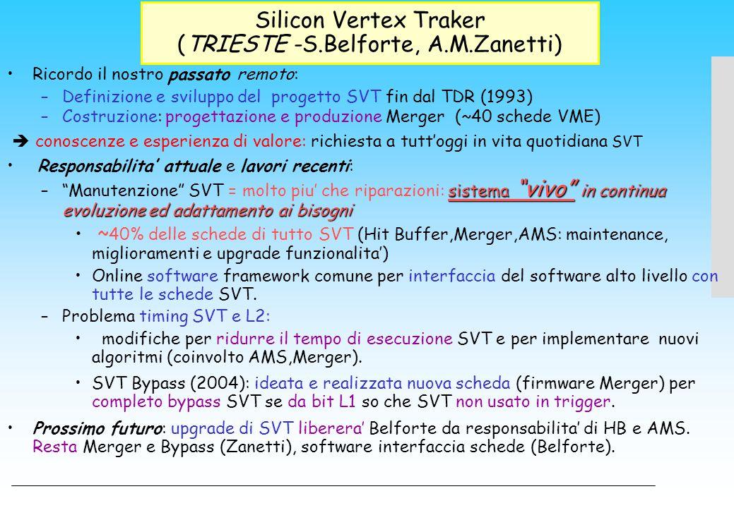 Silicon Vertex Traker (TRIESTE -S.Belforte, A.M.Zanetti) Ricordo il nostro passato remoto: –Definizione e sviluppo del progetto SVT fin dal TDR (1993)