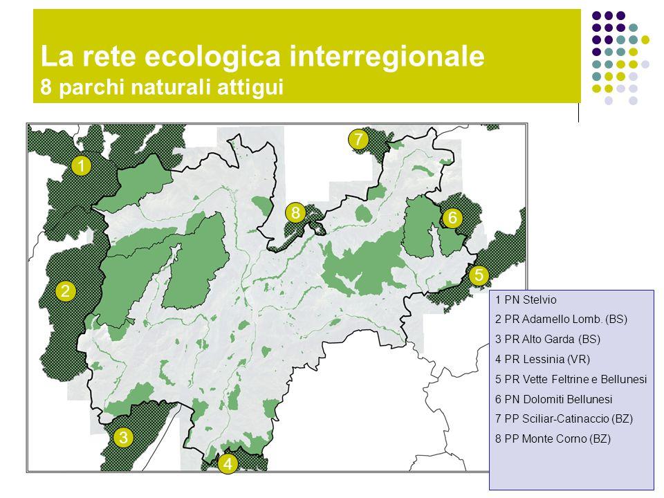 La rete ecologica interregionale 8 parchi naturali attigui 1 2 3 4 6 7 5 8 1 PN Stelvio 2 PR Adamello Lomb. (BS) 3 PR Alto Garda (BS) 4 PR Lessinia (V