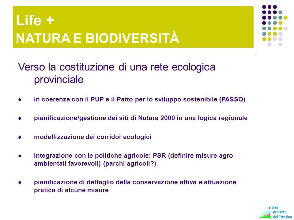 Verso la costituzione di una rete ecologica provinciale in coerenza con il PUP e il Patto per lo sviluppo sostenibile (PASSO) pianificazione/gestione dei siti di Natura 2000 in una logica regionale modellizzazione dei corridoi ecologici integrazione con le politiche agricole: PSR (definire misure agro ambientali favorevoli) (parchi agricoli?) pianificazione di dettaglio della conservazione attiva e attuazione pratica di alcune misure Life + NATURA E BIODIVERSITÀ