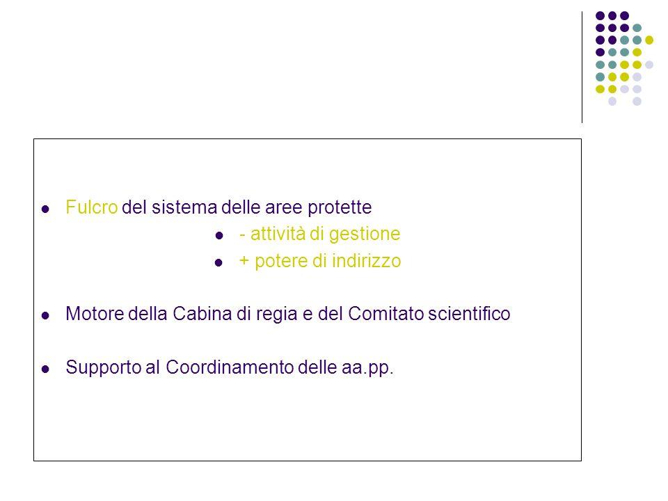 Fulcro del sistema delle aree protette - attività di gestione + potere di indirizzo Motore della Cabina di regia e del Comitato scientifico Supporto al Coordinamento delle aa.pp.