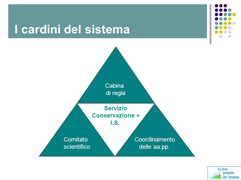 Cabina di regia Comitato scientifico Coordinamento delle aa.pp. Servizio Conservazione + I.S. I cardini del sistema