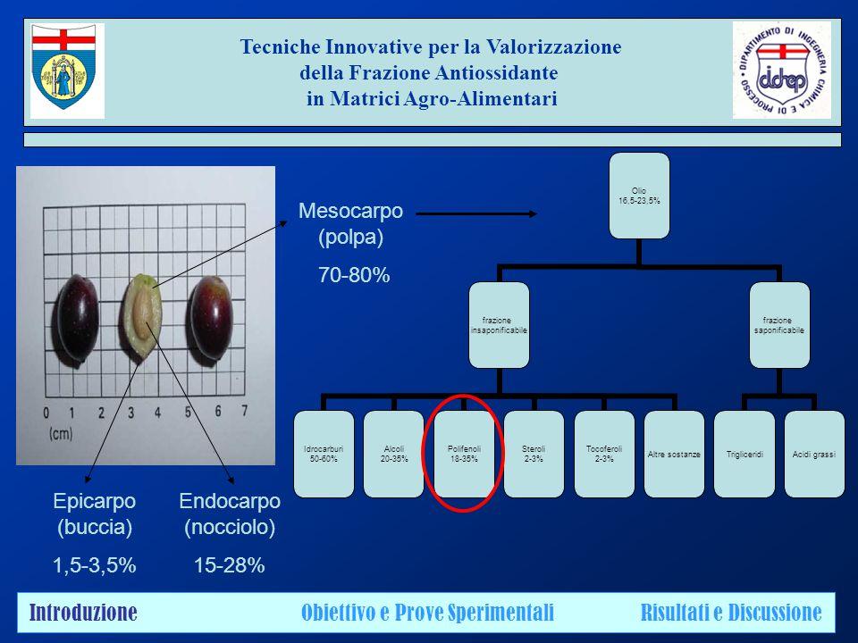 Tecniche Innovative per la Valorizzazione della Frazione Antiossidante in Matrici Agro-Alimentari Epicarpo (buccia) 1,5-3,5% Endocarpo (nocciolo) 15-28% Mesocarpo (polpa) 70-80% Olio 16,5-23,5% frazione insaponificabile Idrocarburi 50-60% Alcoli 20-35% Polifenoli 18-35% Steroli 2-3% Tocoferoli 2-3% Altre sostanze frazione saponificabile TrigliceridiAcidi grassi Introduzione Obiettivo e Prove Sperimentali Risultati e Discussione