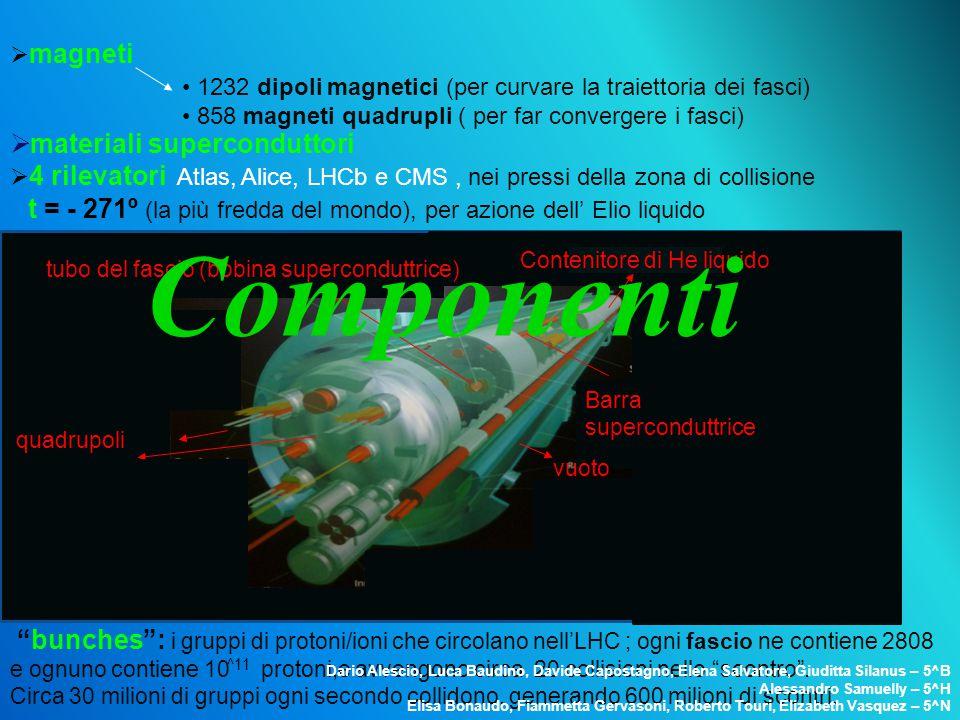 """ magneti  materiali superconduttori  4 rilevatori Atlas, Alice, LHCb e CMS, nei pressi della zona di collisione """"bunches"""": i gruppi di protoni/ioni"""