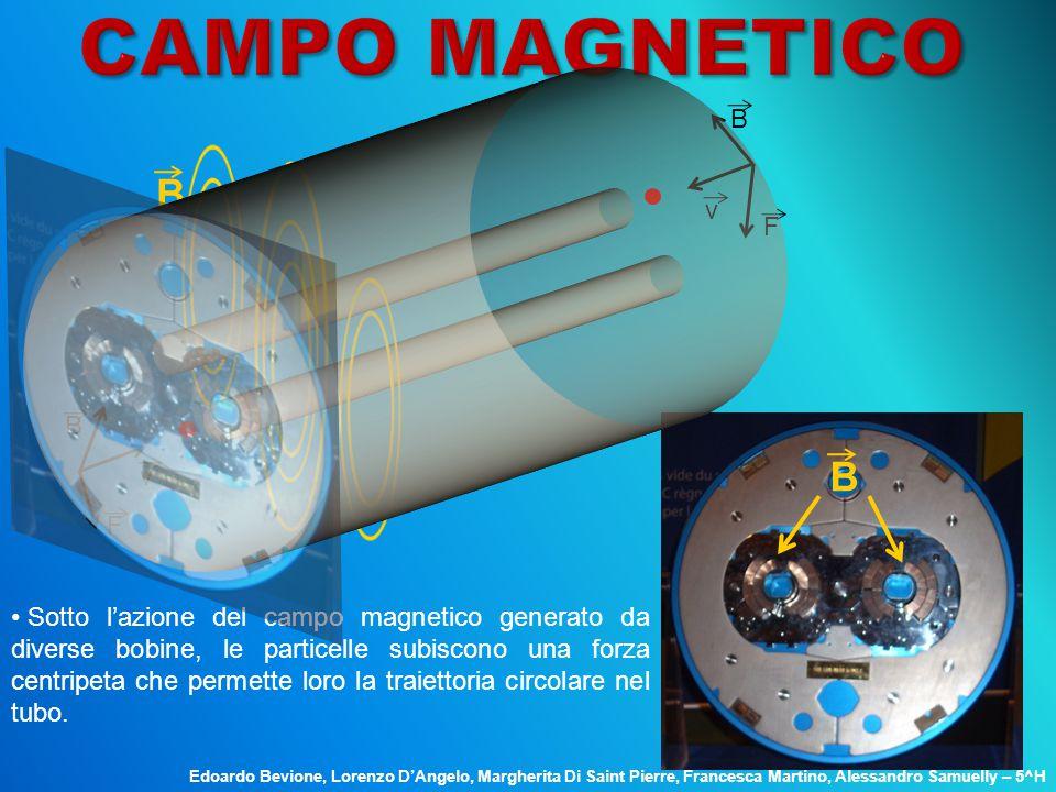 B v F B v F B B Sotto l'azione del campo magnetico generato da diverse bobine, le particelle subiscono una forza centripeta che permette loro la traie