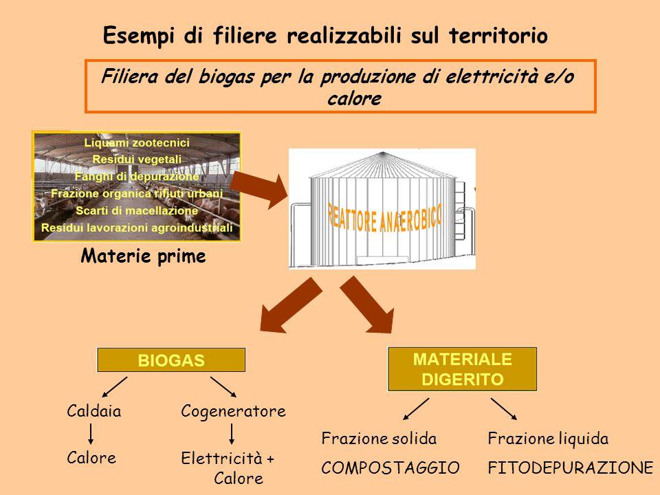 Filiera del biogas per la produzione di elettricità e/o calore Esempi di filiere realizzabili sul territorio Materie prime Caldaia Calore Cogeneratore