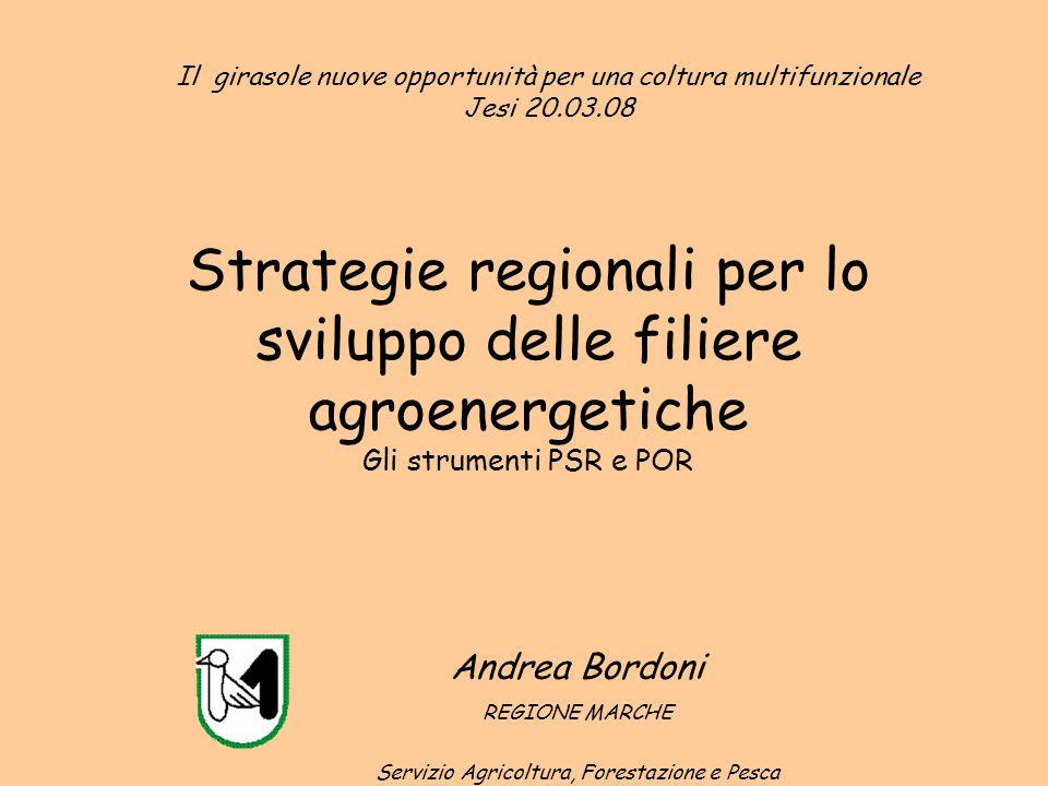 Strategie regionali per lo sviluppo delle filiere agroenergetiche Gli strumenti PSR e POR Andrea Bordoni REGIONE MARCHE Servizio Agricoltura, Forestaz