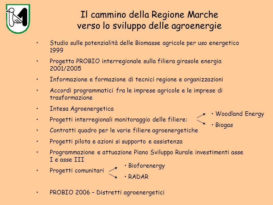 Il cammino della Regione Marche verso lo sviluppo delle agroenergie Studio sulle potenzialità delle Biomasse agricole per uso energetico 1999 Progetto