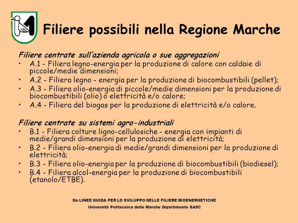 Filiere possibili nella Regione Marche Filiere centrate sull'azienda agricola o sue aggregazioni A.1 - Filiera legno-energia per la produzione di calo