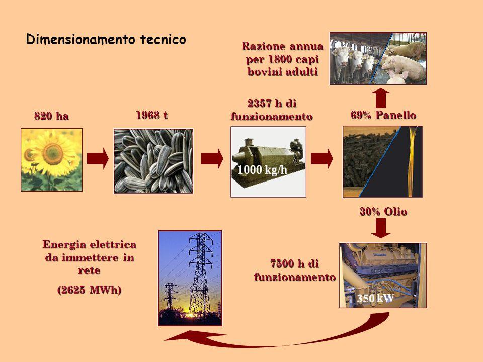 1968 t 2357 h di funzionamento 69% Panello Razione annua per 1800 capi bovini adulti 30% Olio 7500 h di funzionamento Energia elettrica da immettere i