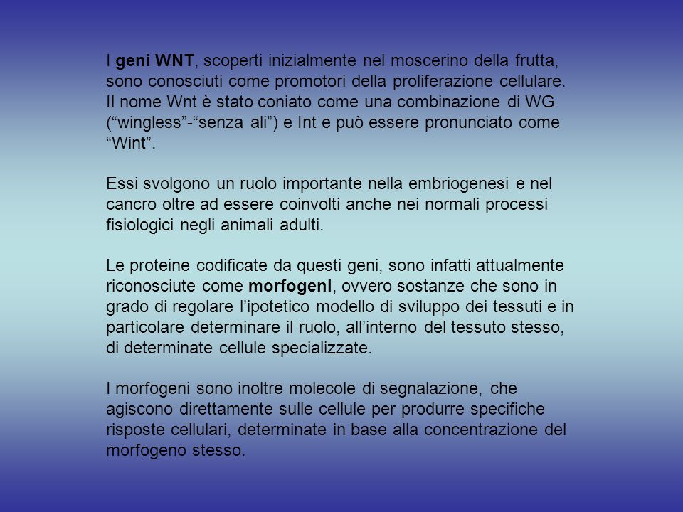 I geni WNT, scoperti inizialmente nel moscerino della frutta, sono conosciuti come promotori della proliferazione cellulare. Il nome Wnt è stato conia