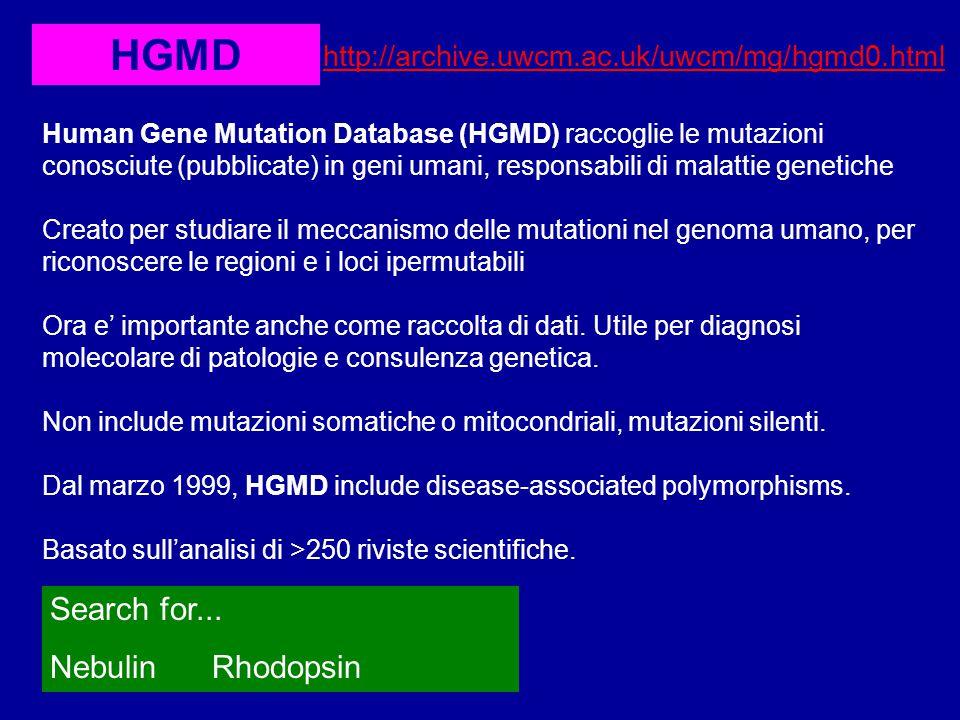 HGMD http://archive.uwcm.ac.uk/uwcm/mg/hgmd0.html Human Gene Mutation Database (HGMD) raccoglie le mutazioni conosciute (pubblicate) in geni umani, responsabili di malattie genetiche Creato per studiare il meccanismo delle mutationi nel genoma umano, per riconoscere le regioni e i loci ipermutabili Ora e' importante anche come raccolta di dati.