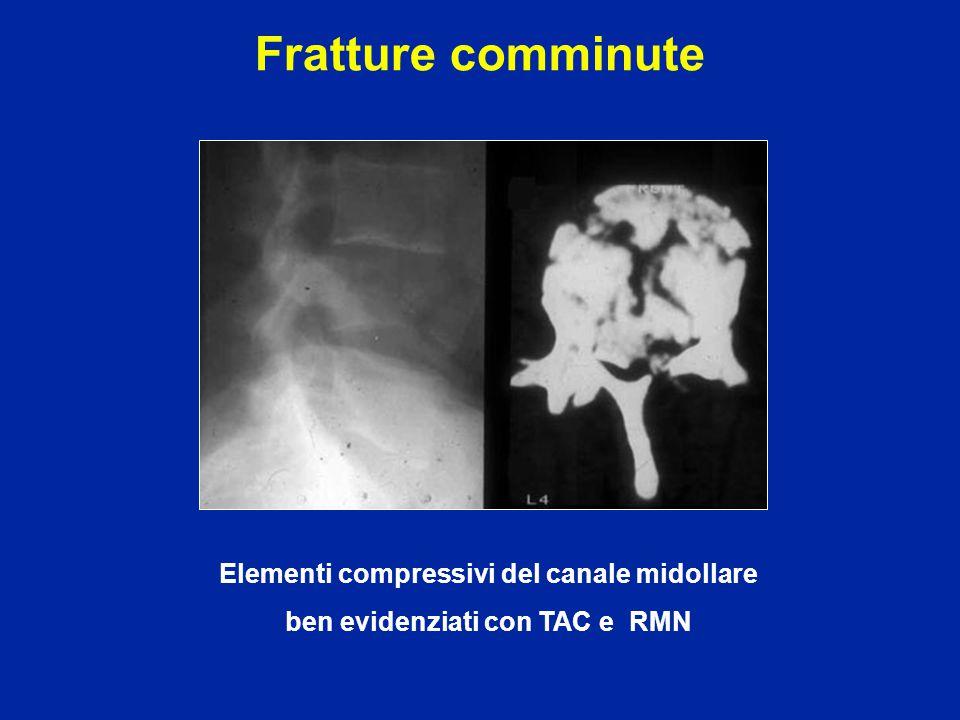 Disturbi neurologici Motricità L2 : flessione dell'anca L3 : estensione del ginocchio L4 : estensione della caviglia L5 : estensione delle dita S1 : flessione plantare Zona ano-perineale Classificazione ASIA