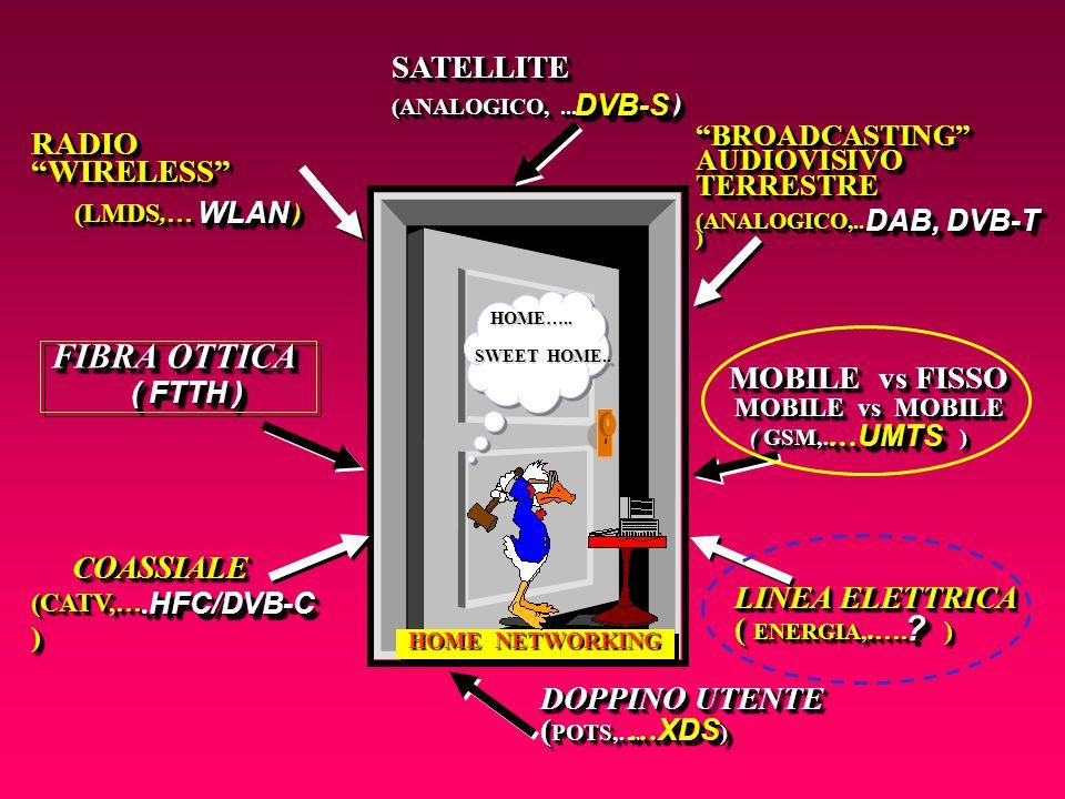 Negli ultimi anni, per la rete di accesso verso l'utente privato, si è avuta una rivoluzione con l'introduzione di una grande varietà di mezzi diversi, determinanti per i servizi a banda larga del futuro…… Storia dei sistemi d'accesso E' utile ripercorrere la storia…….