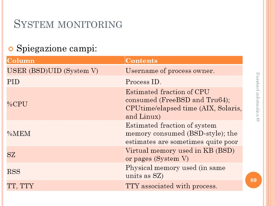S YSTEM MONITORING Spiegazione campi: 80 Burstnet informatica © ColumnContents USER (BSD)UID (System V)Username of process owner.