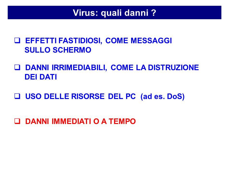 Virus: quali danni .