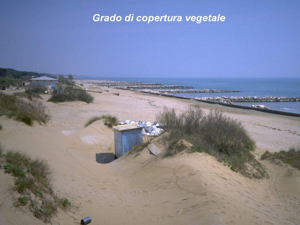 Grado di copertura vegetale