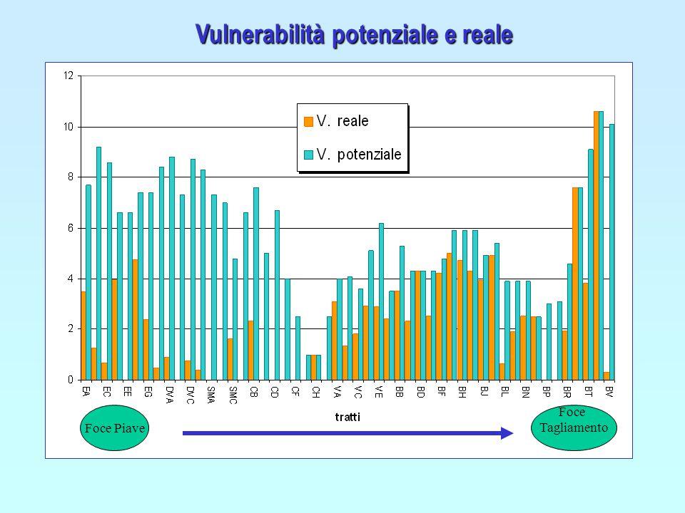Vulnerabilità potenziale e reale Foce Piave Foce Tagliamento