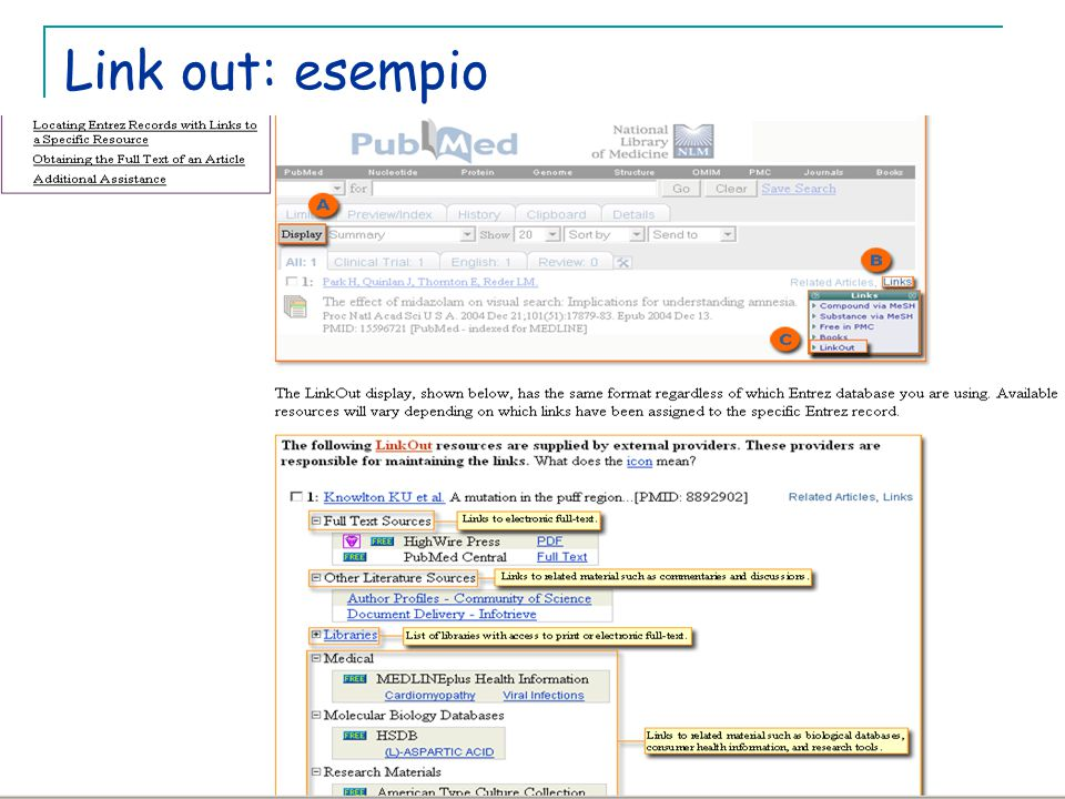 Link out: esempio