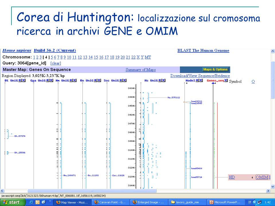 Corea di Huntington: localizzazione sul cromosoma ricerca in archivi GENE e OMIM