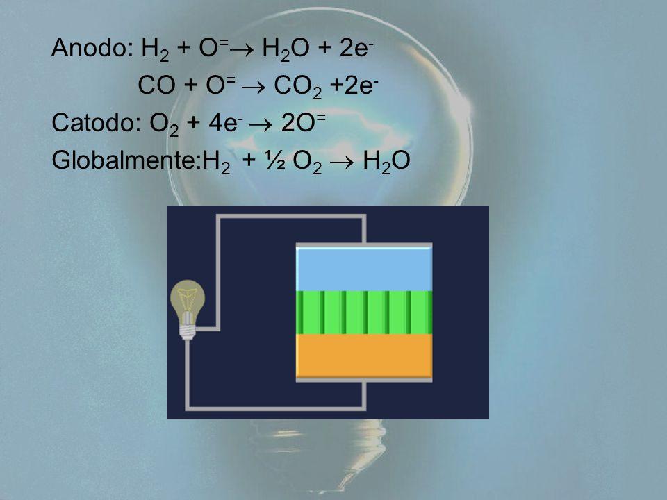 Anodo: H 2 + O =  H 2 O + 2e - CO + O =  CO 2 +2e - Catodo: O 2 + 4e -  2O = Globalmente:H 2 + ½ O 2  H 2 O