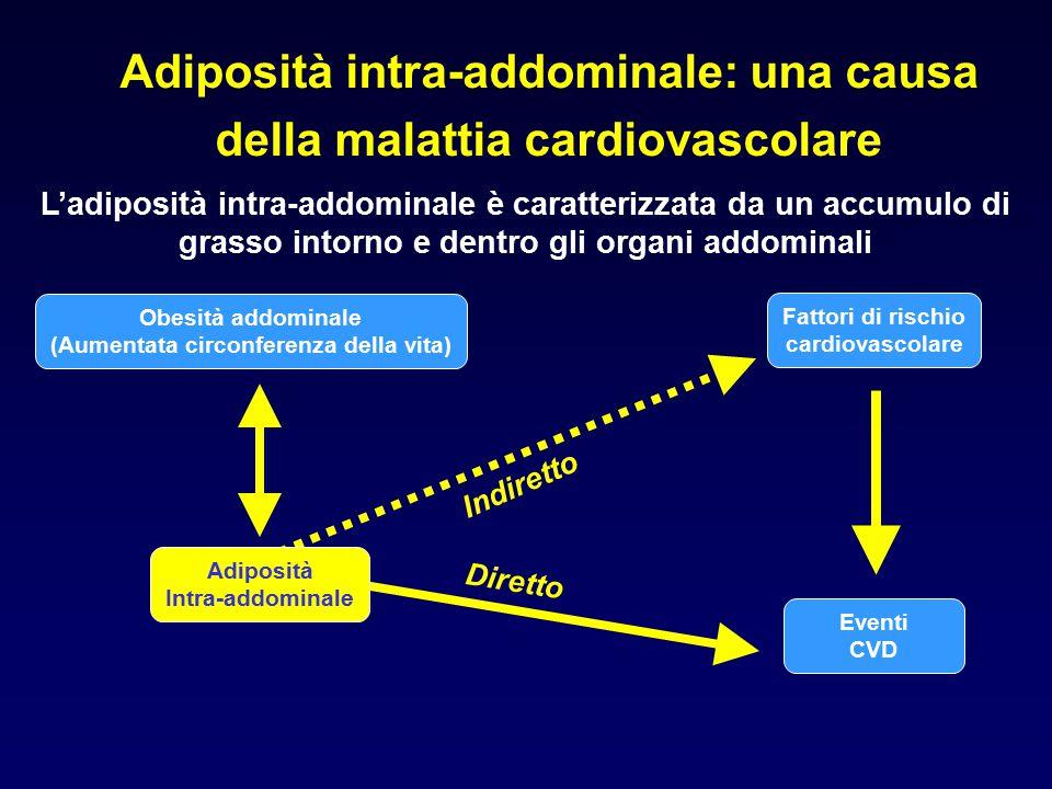 Adiposità intra-addominale: una causa della malattia cardiovascolare L'adiposità intra-addominale è caratterizzata da un accumulo di grasso intorno e