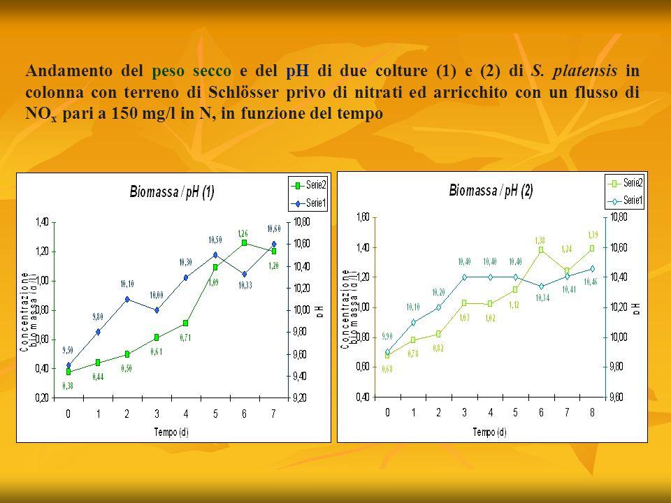 Andamento del peso secco e del pH di due colture (1) e (2) di S.