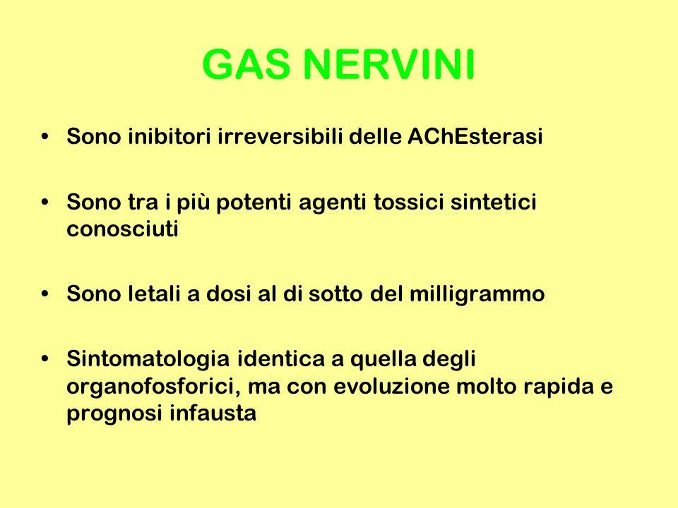 GAS NERVINI Sono inibitori irreversibili delle AChEsterasi Sono tra i più potenti agenti tossici sintetici conosciuti Sono letali a dosi al di sotto d