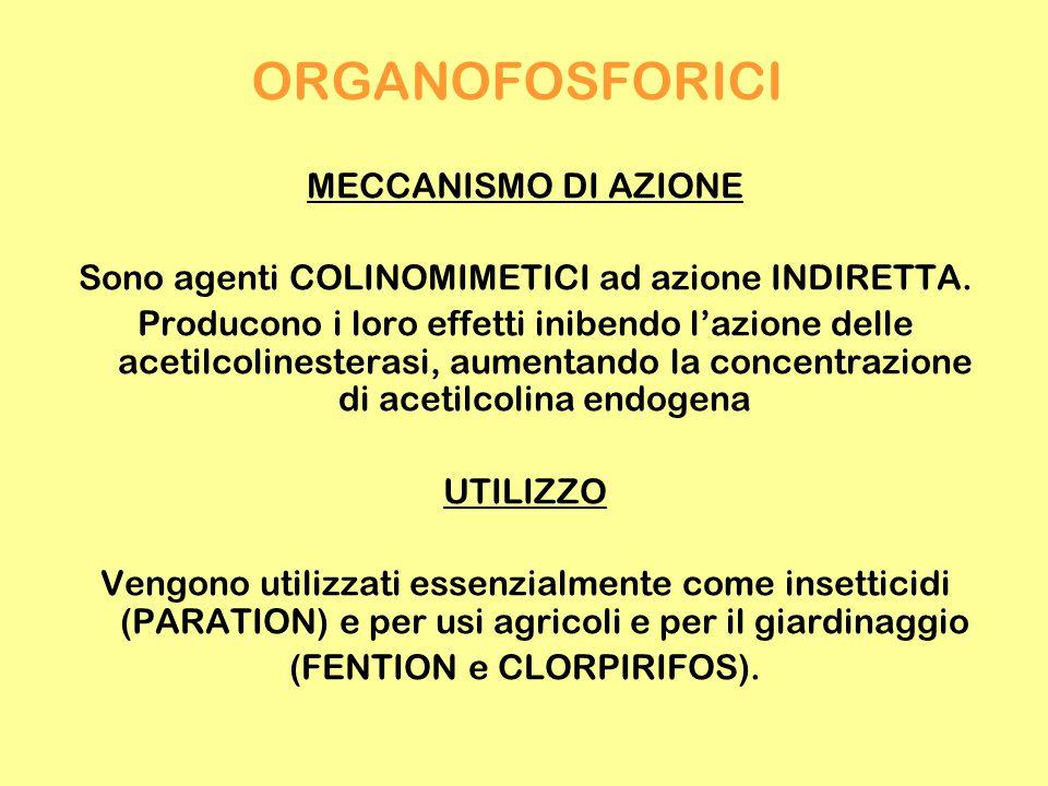 ORGANOFOSFORICI MECCANISMO DI AZIONE Sono agenti COLINOMIMETICI ad azione INDIRETTA. Producono i loro effetti inibendo l'azione delle acetilcolinester