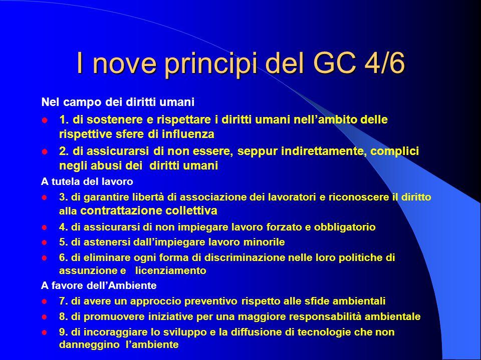 I nove principi del GC 4/6 Nel campo dei diritti umani 1.