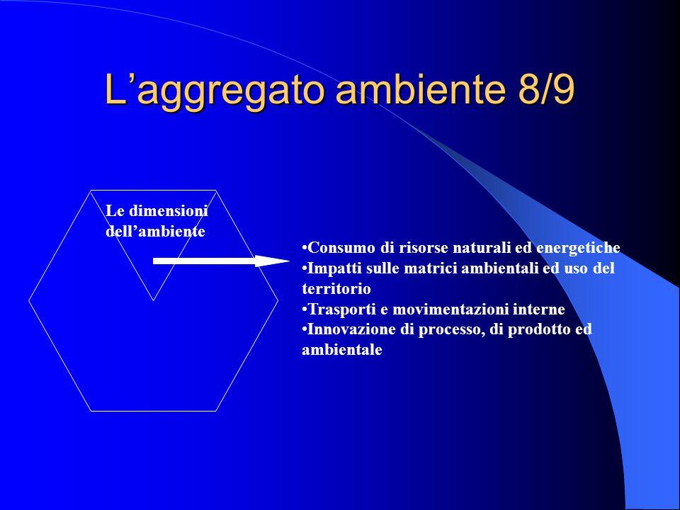 L'aggregato ambiente 8/9 Le dimensioni dell'ambiente Consumo di risorse naturali ed energetiche Impatti sulle matrici ambientali ed uso del territorio Trasporti e movimentazioni interne Innovazione di processo, di prodotto ed ambientale
