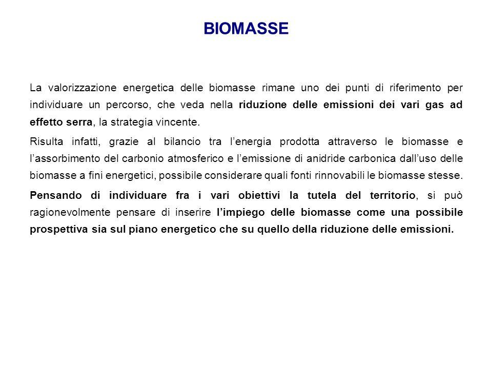 La valorizzazione energetica delle biomasse rimane uno dei punti di riferimento per individuare un percorso, che veda nella riduzione delle emissioni