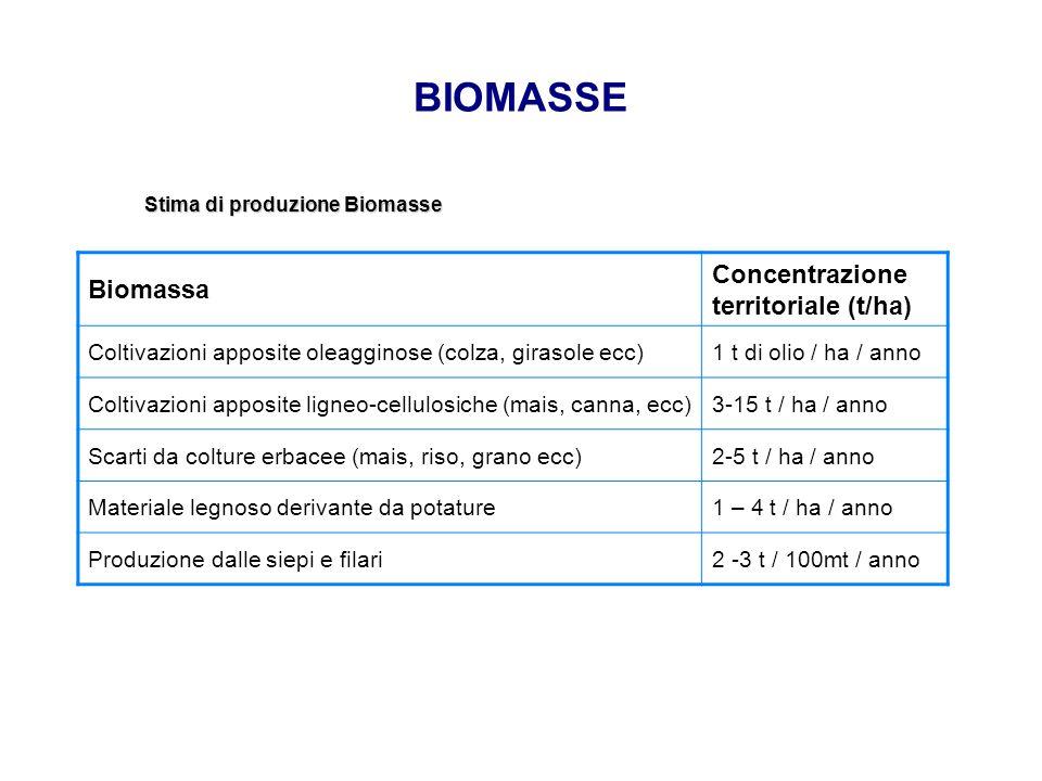 BIOMASSE Stima di produzione Biomasse Biomassa Concentrazione territoriale (t/ha) Coltivazioni apposite oleagginose (colza, girasole ecc)1 t di olio /