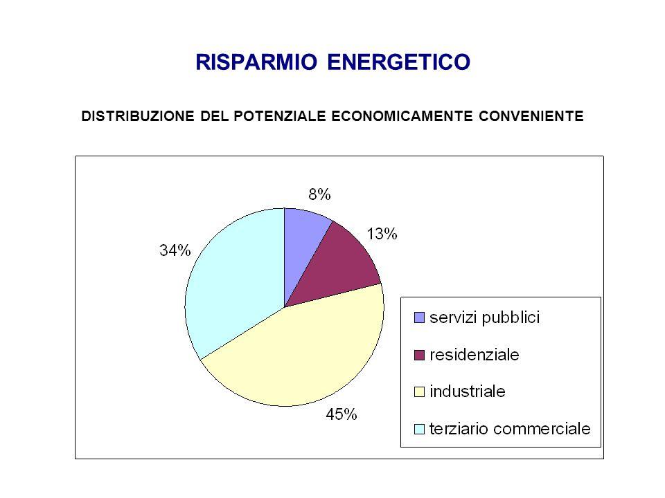 RISPARMIO ENERGETICO DISTRIBUZIONE DEL POTENZIALE ECONOMICAMENTE CONVENIENTE