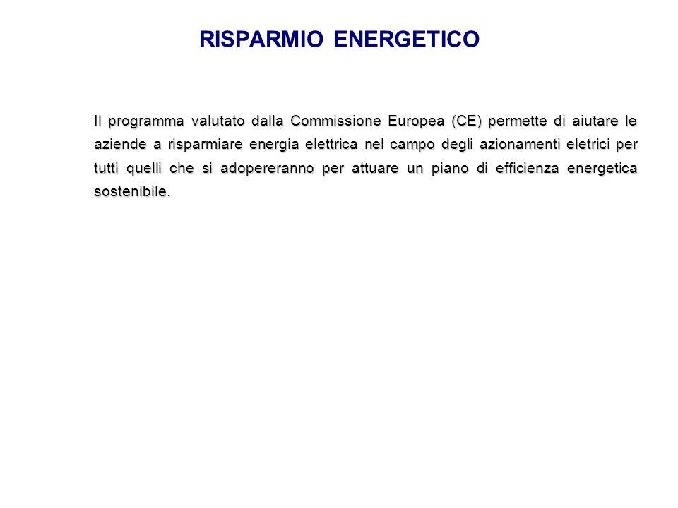 RISPARMIO ENERGETICO Il programma valutato dalla Commissione Europea (CE) permette di aiutare le aziende a risparmiare energia elettrica nel campo deg