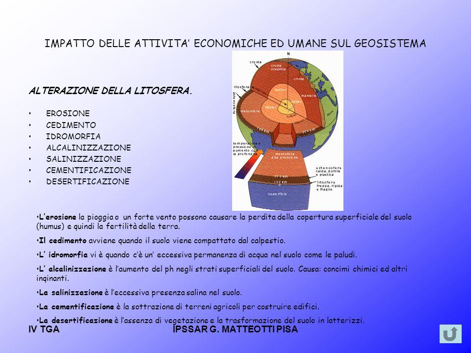 IV TGAIPSSAR G.MATTEOTTI PISA I Marchi di qualità.