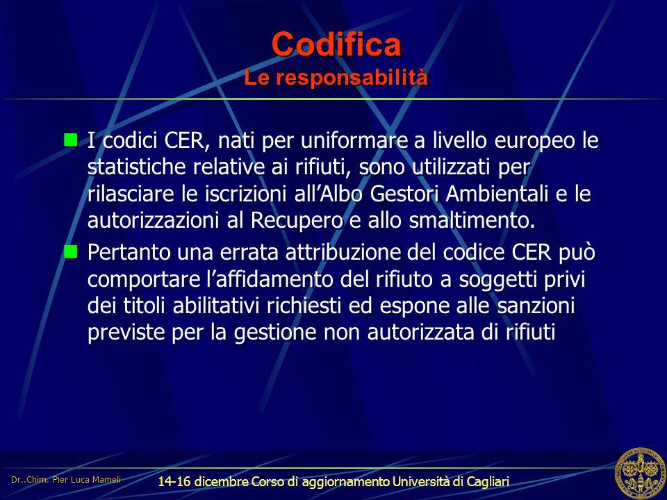 14-16 dicembre Corso di aggiornamento Università di Cagliari Codifica Le responsabilità I codici CER, nati per uniformare a livello europeo le statist
