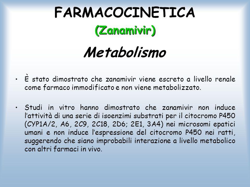 FARMACOCINETICA (Zanamivir) È stato dimostrato che zanamivir viene escreto a livello renale come farmaco immodificato e non viene metabolizzato. Studi